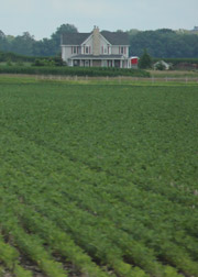 Rural house in Central/Southern Illinois